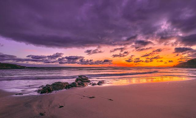 Violaceous Dawn