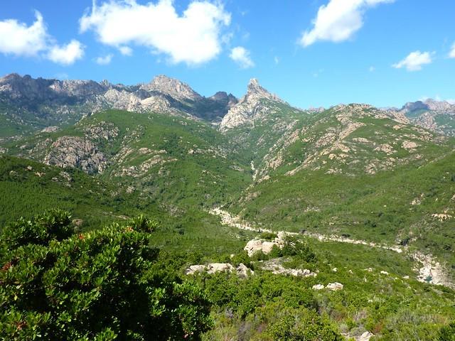 Depuis le départ de la piste RD de la Sainte-Lucie : la moyenne vallée du Cavu avec Punta Bunifazinca et Punta Buvone