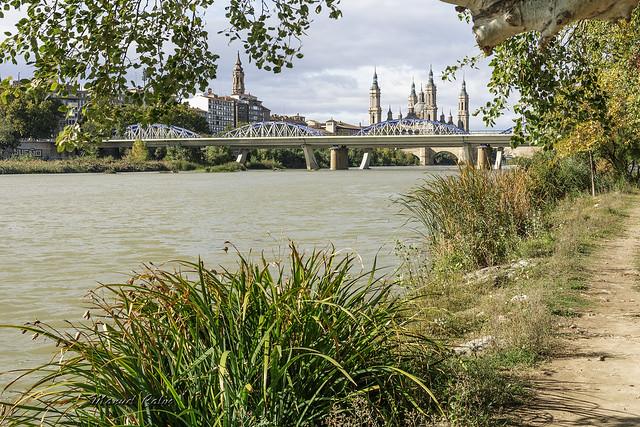 Ribera del Ebro 125