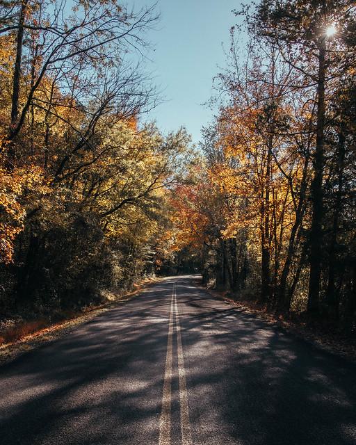 Autumn Road. Newton County, Arkansas. 2019.