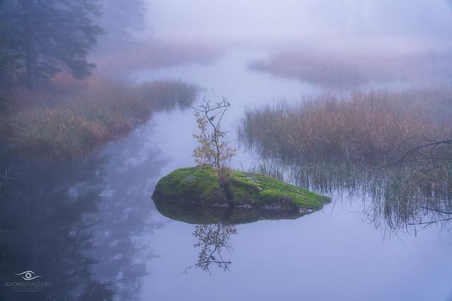 Misty river II