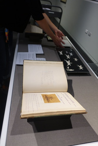 Items being arranged in display case