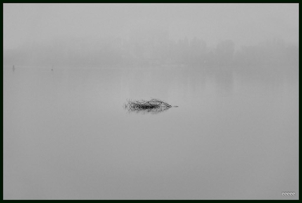 Туман Утро Набережная Ср d3200 177-1
