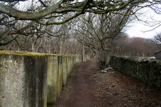 Path of sorts near Gosford