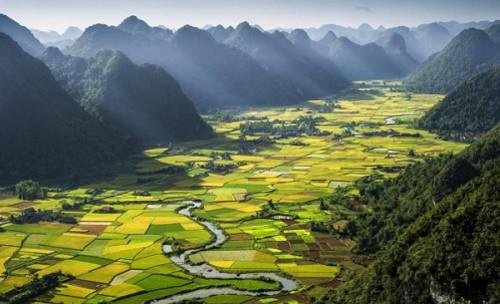 phongcanh_vietnam05