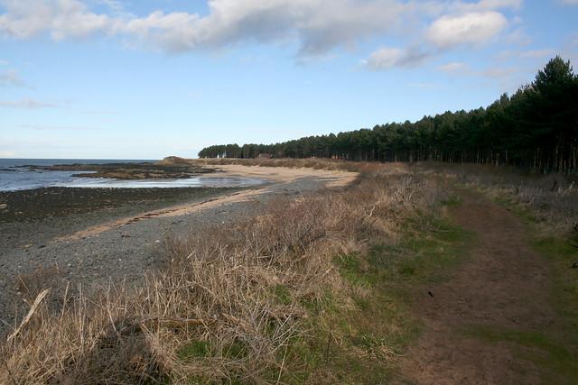 The coast near Dirleton