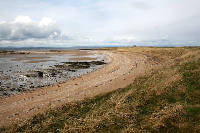 The coast at Aberlday
