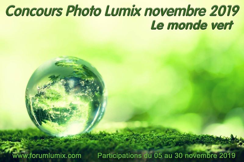 Concours du mois de novembre 2019 49021177252_12d831b2ed_c