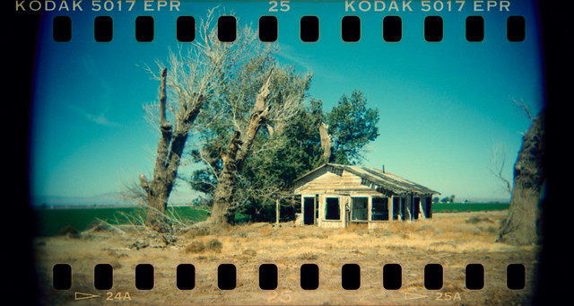 homestead (holga xpro). mojave desert, ca. 2019.