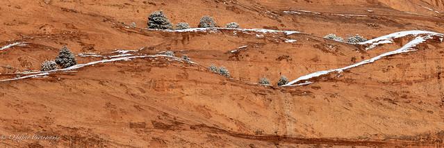 Rock Wall Abstract