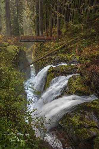 Sol Duc Falls, Olympic Peninsula, Washington