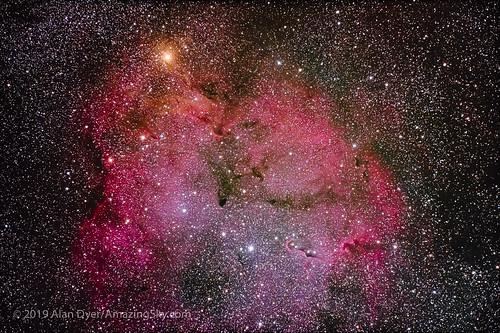 Canon EOS Ra Test Image — IC 1396 in Cepheus