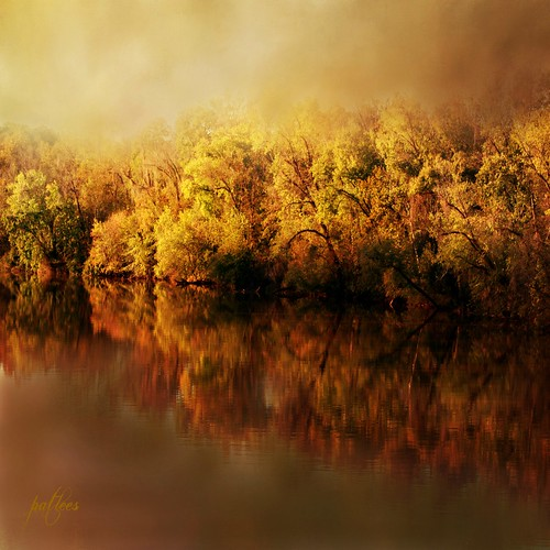 Fall at the River....(Explored)