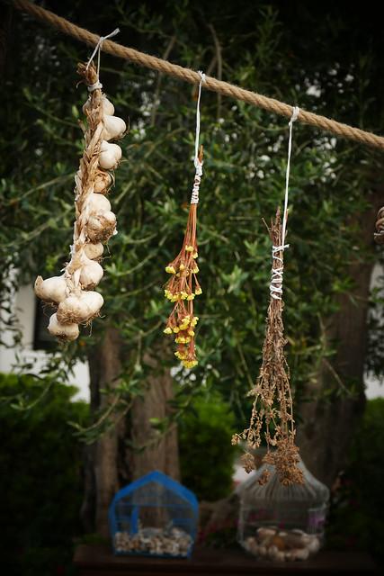 Aromi e profumi del Gargano