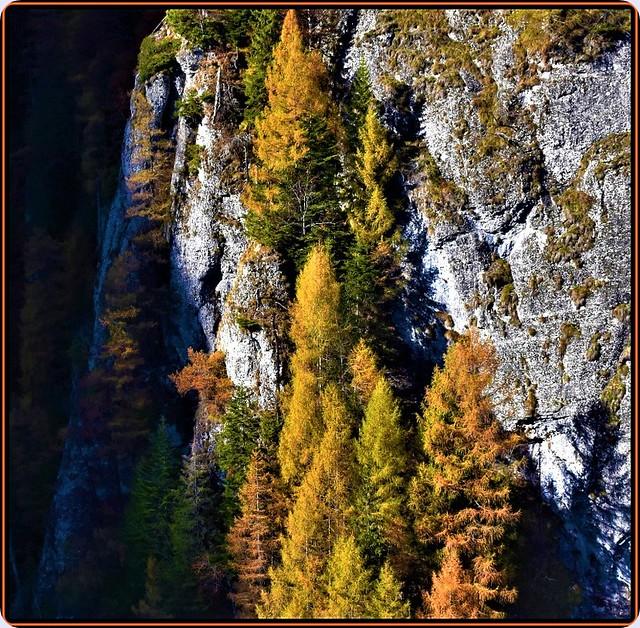 Autumn in the Bucegi mountains -2