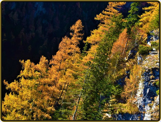 Autumn in the Bucegi mountains -1