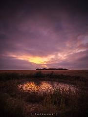 Dew Pond Sunset 37/52 2019