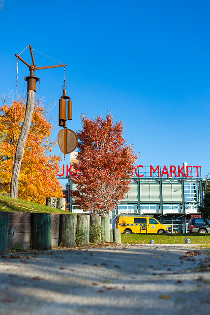 Fall Colors at Milwaukee Public Market