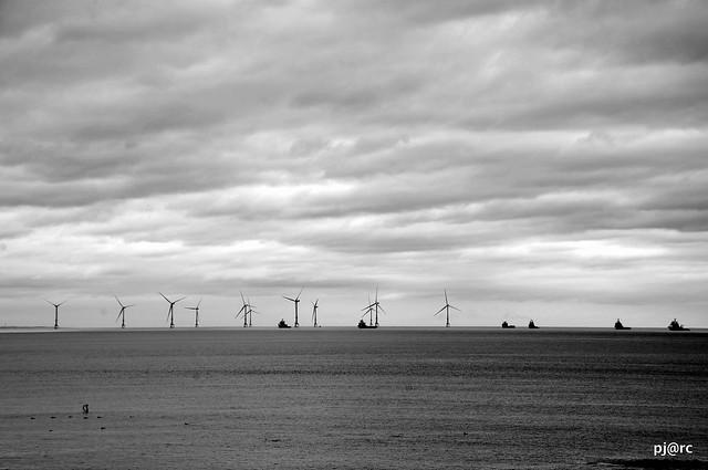 Scotland coast 4