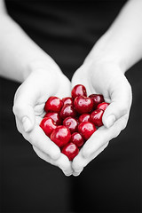 For the Love of Cherries