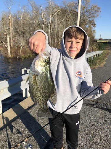 Photo of boy holding up a crappie