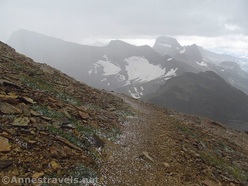 The storm flinging snow pellets on the Swiftcurrent Lookout Trail, Glacier National Park, Montana