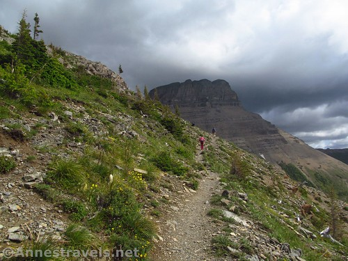 The Swiftcurrent Pass Trail after crossing the creek, Glacier National Park, Montana
