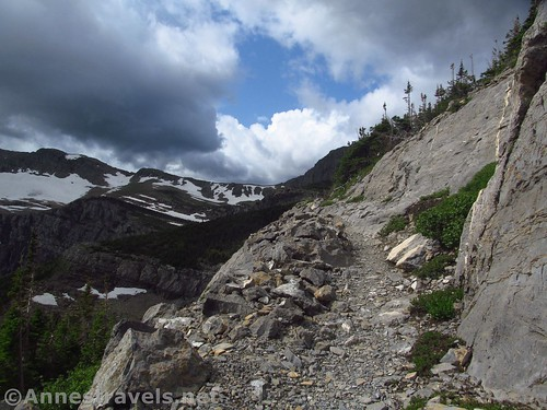 A narrow section of the path into Swiftcurrent Pass, Glacier National Park, Montana