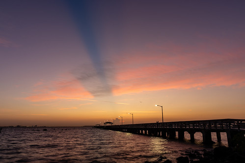tampa florida unitedstatesofamerica ballastpointpark sunrise