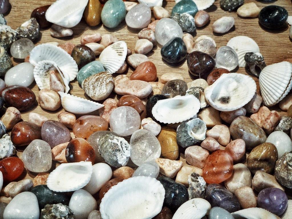 Polished Pebbles and Shells