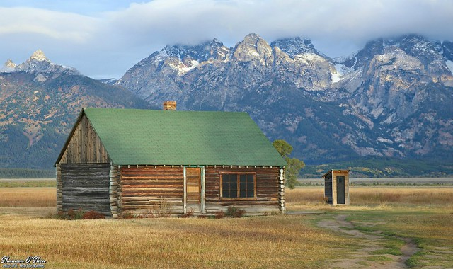 All I want is a log cabin in the middle of nowhere and WIFI
