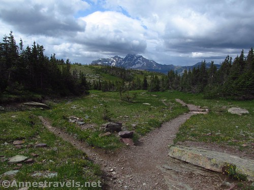 Heavens Peak from the Swiftcurrent Lookout Trail Junction, Glacier National Park, Montana