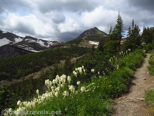 Approaching Swiftcurrent Pass, Glacier National Park, Montana