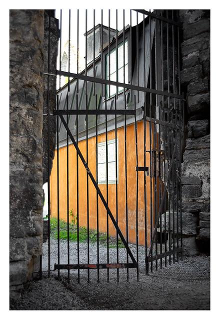 Orange behind the gate