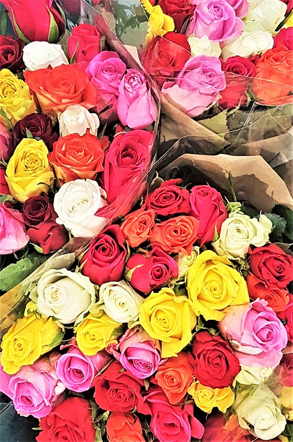 Bouquets of Mixed Colour Roses