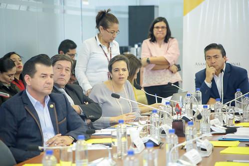 SESIÓN DE LA COMISIÓN OCASIONAL MULTIPARTIDISTA PARA INVESTIGAR LOS HECHOS RELACIONADOS CON EL PARO NACIONAL. QUITO, 06 DE NOVIEMBRE 2019