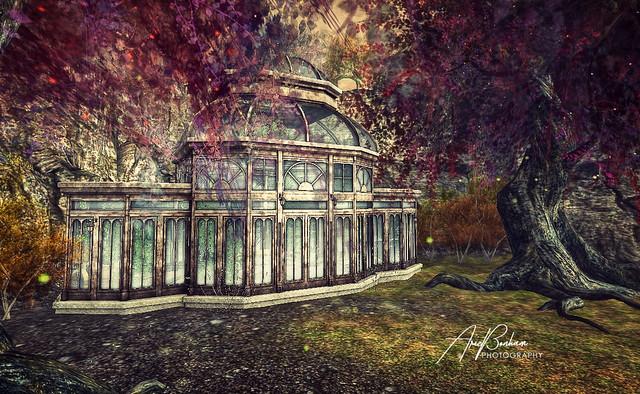 Autumn Sanctuary