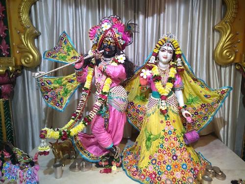 ISKCON Amravati Deity Darshan 07 Nov 2019