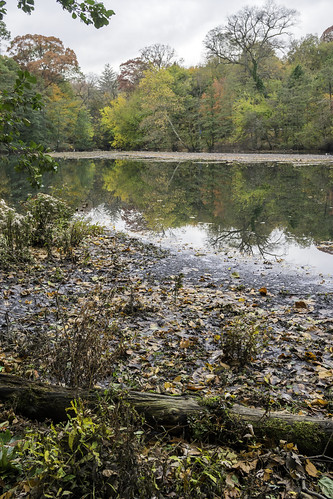 nature park lake reflections trees recycling fall scenic autumn