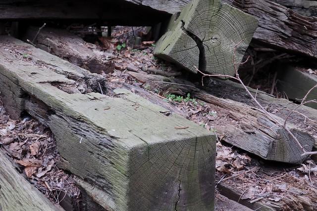 Naturpark Südgelände
