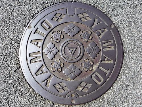 Yamato Yamanashi, manhole cover (山梨県大和村のマンホール)