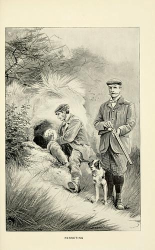 Ferreting_1898
