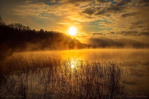 sunrise fog foggy morningmist clouds lakewassookeag wassookeaglake maine mainehighlands dexter dextermaine nature landscape trees sun penobscotcounty newengland november