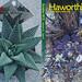 Haworthiad  2019 volume 33 issue 3