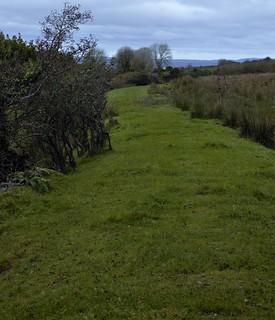 Bryngwyn branch railway line now a slate trail, through route through a field