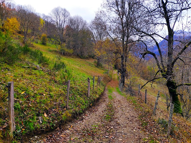 Les couleurs d'automne arrivent sur le louron