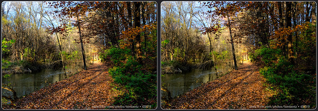 November Afternoon 3 (Stereo)