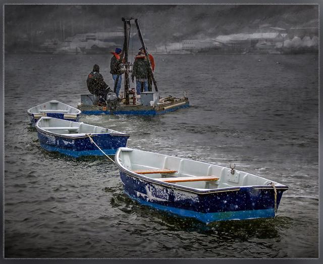 Wishful Boaters