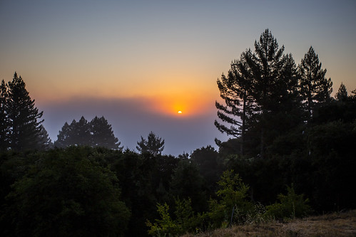 canon6d sunrise landscape nature outdoors outside sun foggy misty colour usa california