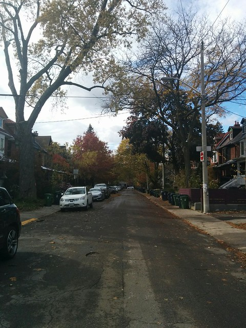 West down Vermont #toronto #seatonvillage #vermontave #fall #autumn